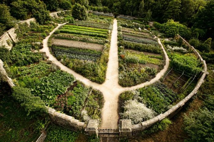 คำอธิบายภาพ : permaculture1-700x467